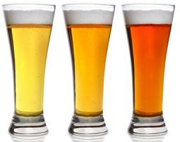 Bier Brauer Kurs