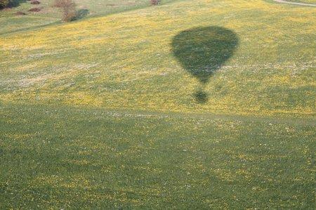 pusteblumen im ballon